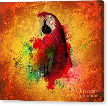 Paint Splatters Of Maccaw Parrot Canvas Print by Angela Waye