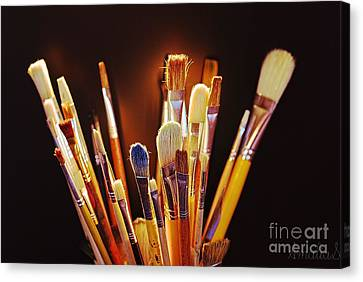 Paintbrushes Canvas Print by AmaS Art