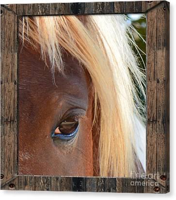 Blonde Beauty  Canvas Print