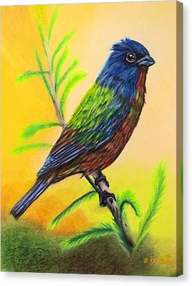 Bunting Canvas Print - Painted Bunting Bird by Zina Stromberg