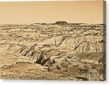 Rustic Canvas Print - Painted Desert In Petrified Forest National Park Rustic by Shawn O'Brien