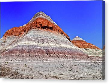 Canvas Print featuring the photograph Painted Desert National Park by Bob and Nadine Johnston