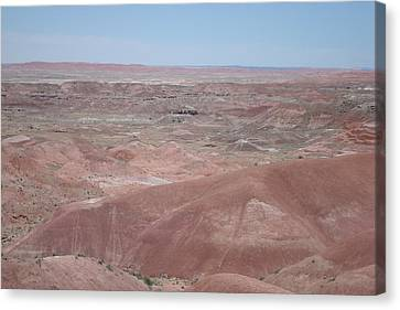 Painted Desert Canvas Print by Susan Woodward