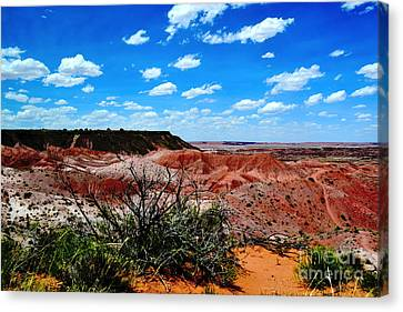 Canvas Print featuring the photograph Painted Desert by Utopia Concepts