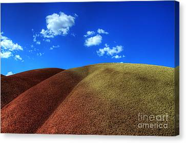 Painted Hills Blue Sky 1 Canvas Print by Bob Christopher