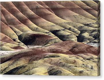Painted Hills Oregon 11 Canvas Print by Bob Christopher