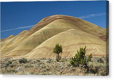 Canvas Print featuring the photograph Painted Hills by Sonya Lang
