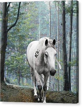 Painted Horse Canvas Print by Diana Shively