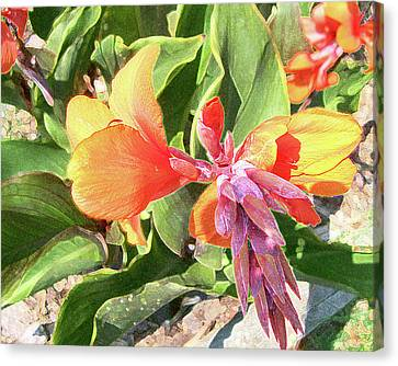 Canvas Print featuring the photograph Painted Lily by Larry Bishop