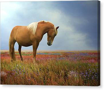 Painted Pastures Canvas Print by Sharon Lisa Clarke