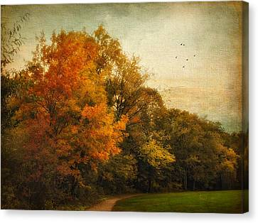 Painted Path Canvas Print by Jessica Jenney