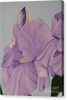 Canvas Print featuring the photograph Painted Purple Irises by Margaret Newcomb