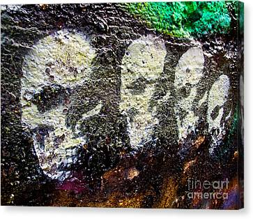 Painted Skulls Canvas Print by Kelly Holm