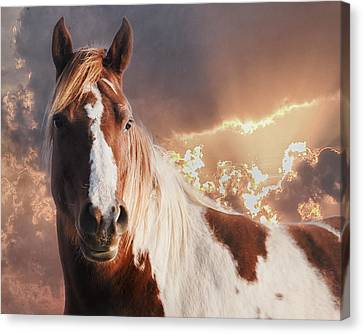 Painted Sunrise Canvas Print by Ron  McGinnis