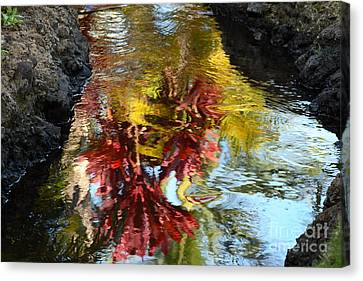 Painted Water Canvas Print by Jennifer Apffel