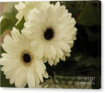 Painted White Flowers Canvas Print by Nancy Dempsey