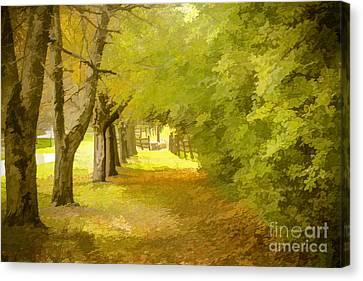Painterly Pathway Canvas Print