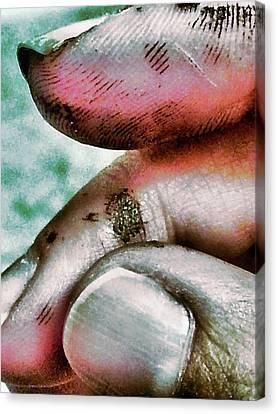 Painters Hand 2 Canvas Print