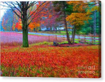 Painting Like Frontyard In Autumn Canvas Print by Tina M Wenger