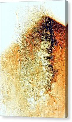 Painting With Shadows Canvas Print by Jacqueline McReynolds