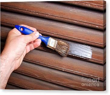 Painting Woodwork Canvas Print by Sinisa Botas