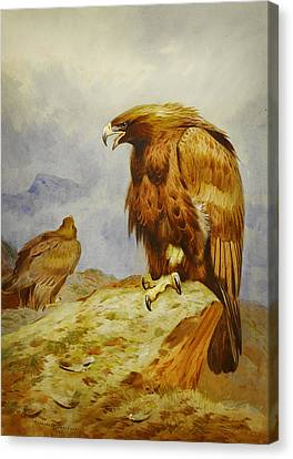 Pair Of Golden Eagles Canvas Print by Celestial Images