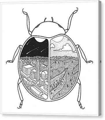 Paired Beetle Canvas Print