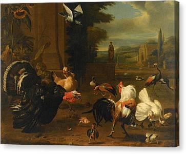 Garden Scene Canvas Print - Palace Garden Exotic Birds And Farmyard Fowl by Melchior de Hondecoeter