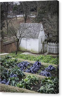 Palace Kitchen Winter Garden Canvas Print