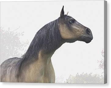 Pale Blue-eyed Horse Canvas Print