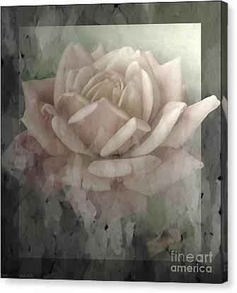 Pale Rose Photoart Canvas Print by Debbie Portwood