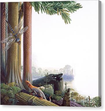 Meganeura Canvas Print - Paleozoic Era Animals by Publiphoto