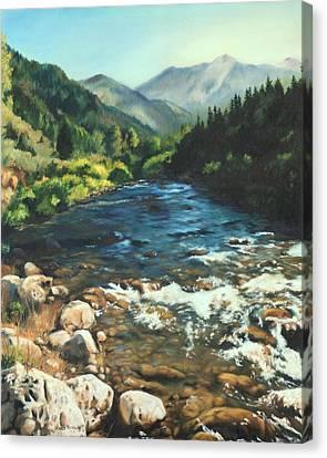 Palisades Creek  Canvas Print by Lori Brackett