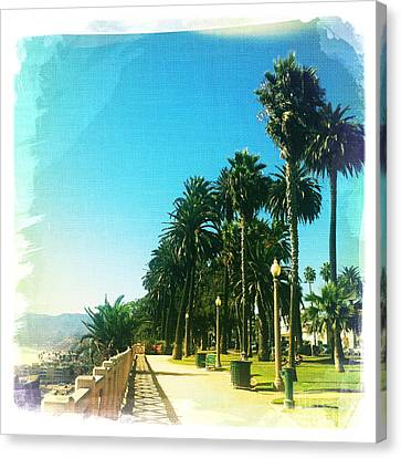 Palisades Park Canvas Print by Nina Prommer