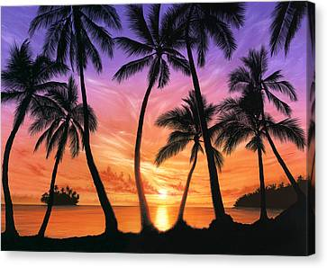 Palm Beach Sundown Canvas Print by Andrew Farley