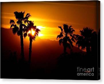 Palm Desert Sunset Canvas Print by Patrick Witz