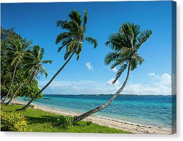 Tonga Canvas Print - Palm Fringed White Sand Beach On An by Michael Runkel