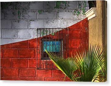 Canvas Print featuring the photograph Palm Frond View by Kandy Hurley