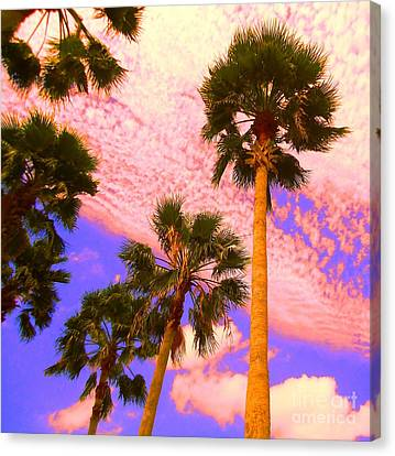 Palm In The Clouds Canvas Print by Ann Johndro-Collins