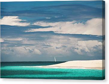 Palm Island, Grenadines, British West Canvas Print by Susan Degginger