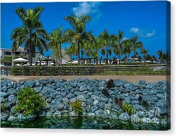 Palm Tree Blue Sky Landscape Canvas Print