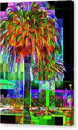 Canvas Print featuring the photograph Palm Tree by Jodie Marie Anne Richardson Traugott          aka jm-ART