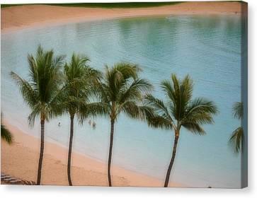 Palm Tree Lagoon Canvas Print