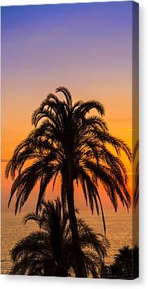 Palm Tree Sunset Vertical Canvas Print
