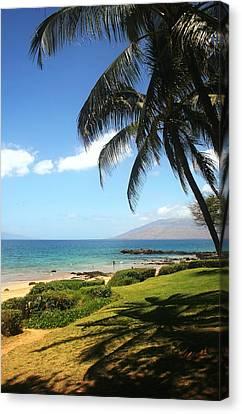 Palm Trees On A Maui Beach Canvas Print