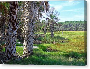 Canvas Print featuring the photograph Palm Trees On Hunting Island by Ellen Tully
