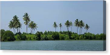 Palm Trees On Small Island Along Coast Canvas Print by Panoramic Images