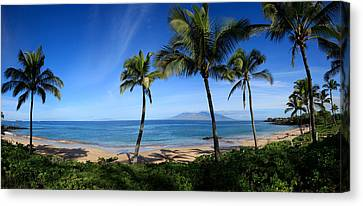 Palm Trees On The Beach, Maui, Hawaii Canvas Print by Panoramic Images