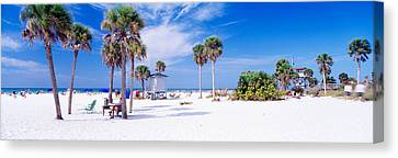 Palm Trees On The Beach, Siesta Key Canvas Print by Panoramic Images