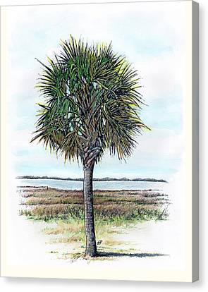 Palmetto Proud Canvas Print by Stephen Paul Herchak